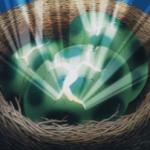 【遊戯王】『甲虫装機(インゼクター)』と相性の良いカード12枚まとめました。