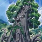 森羅の賢樹 シャーマン