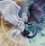 光と闇の竜