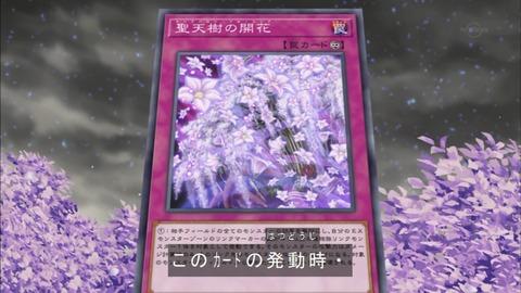 聖天樹の開花(サンアバロン・ブルーミング)