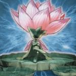 【遊戯王 高騰】《サクリファイス・ロータス》値上がり!新制限「植物リンク」はアマリリス不要!【買取価格,相場】