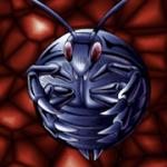 【遊戯王 高騰】《ゴキボール》値上がり!「ゴキブリ」強化の影響!?【買取価格,相場】