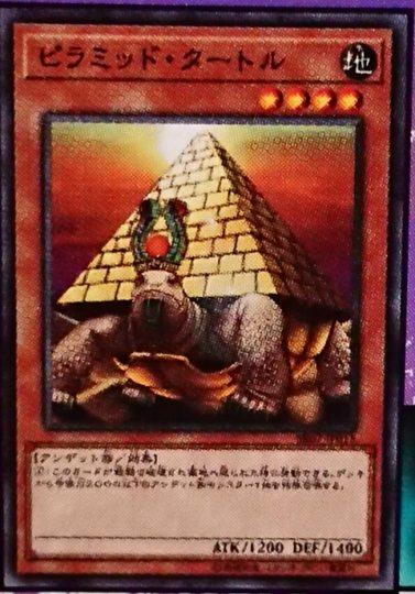 《ピラミッド・タートル》