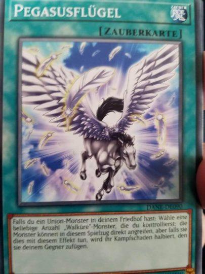 《天馬の翼》