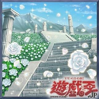 《白薔薇の回廊》