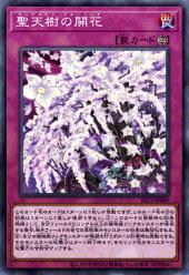 《聖天樹の開花》